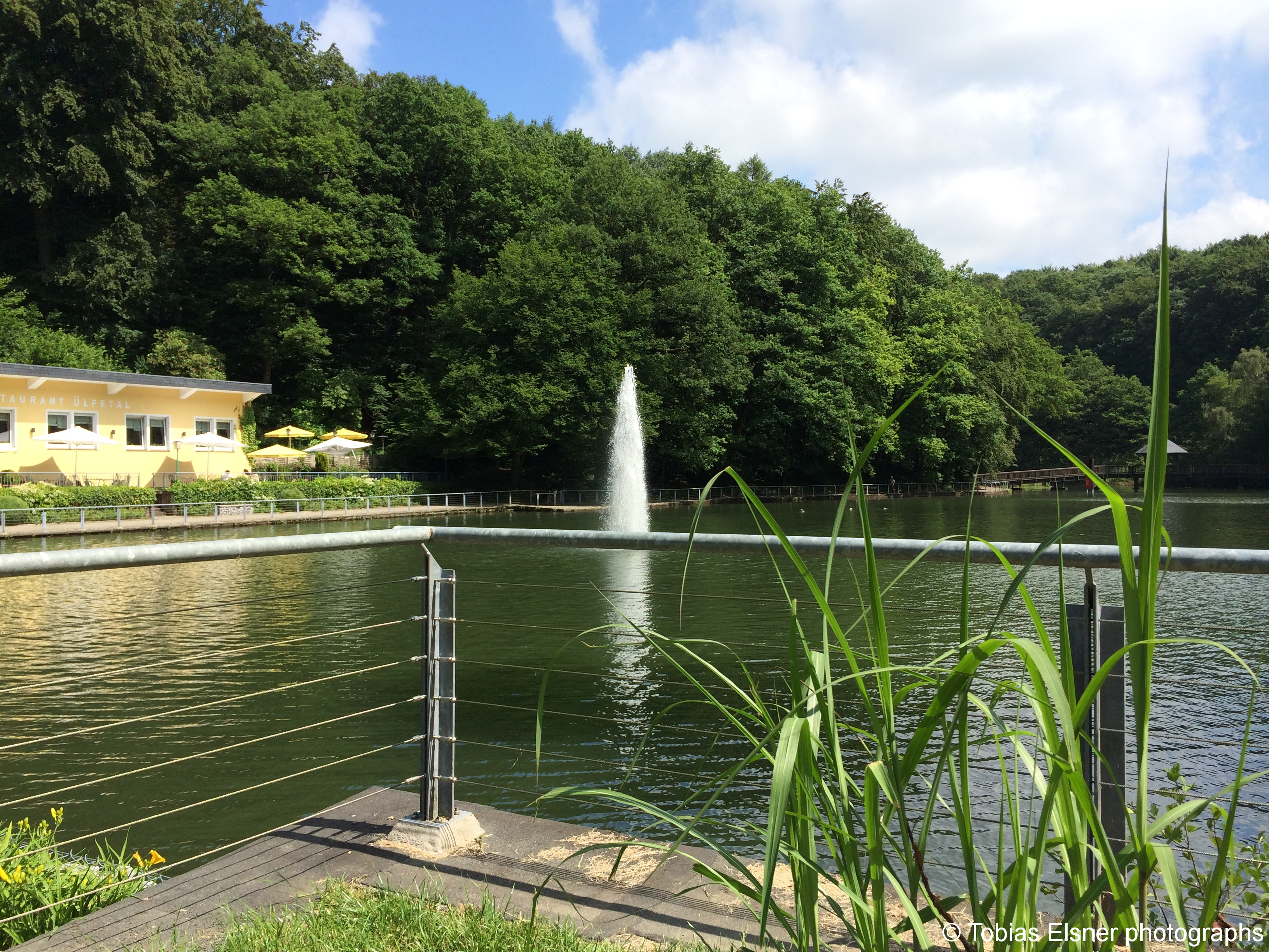 Wanderung Wald Wasser Wolle Weg Radevormwald 2014 Nr.11