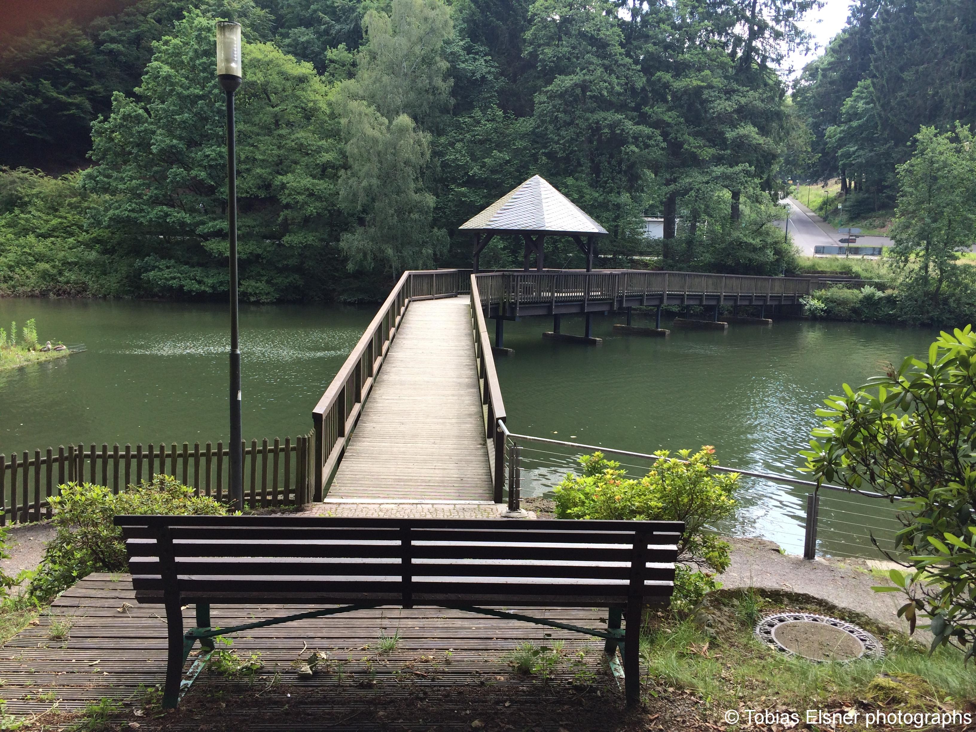 Wanderung Wald Wasser Wolle Weg Radevormwald 2014 Nr.16