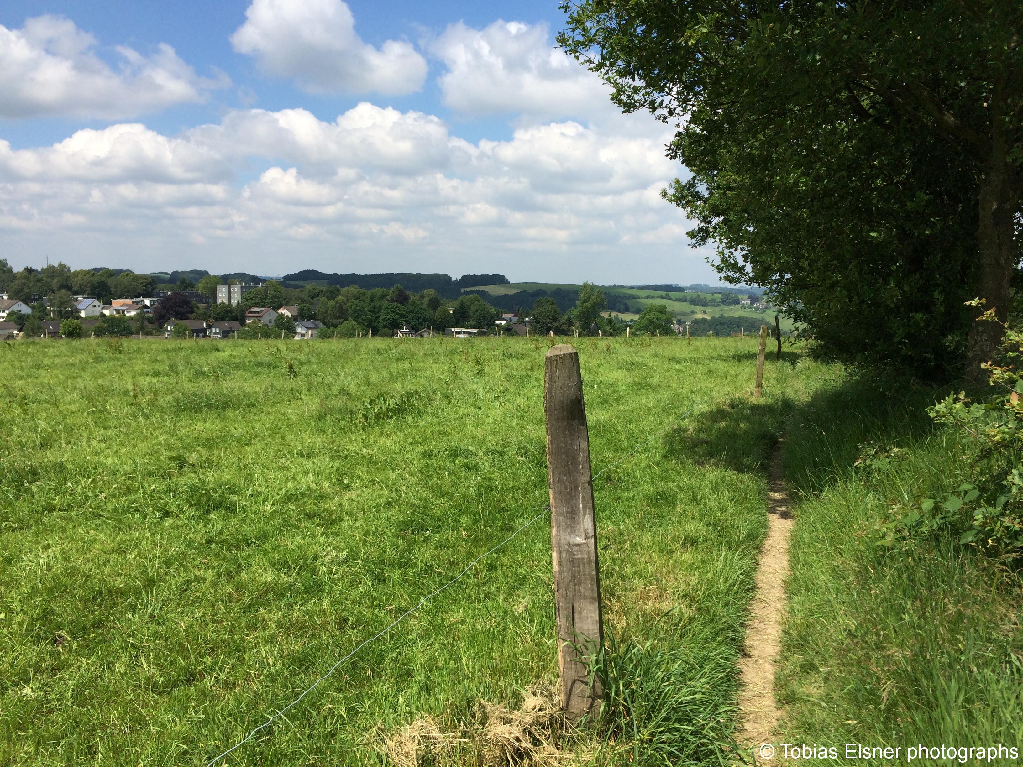 Wanderung Wald Wasser Wolle Weg Radevormwald 2014 Nr.38
