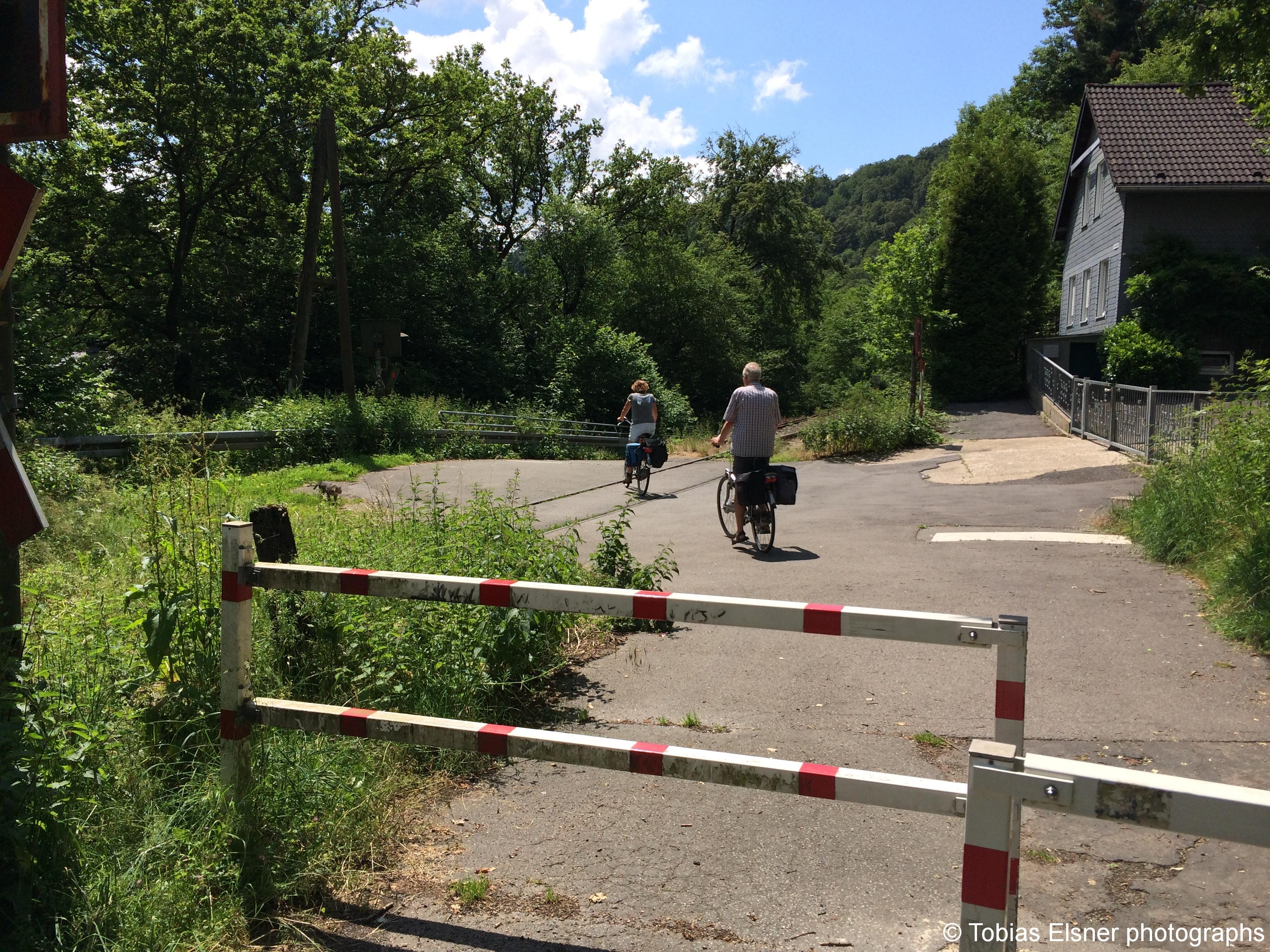 Wanderung Wald Wasser Wolle Weg Radevormwald 2014 Nr.63