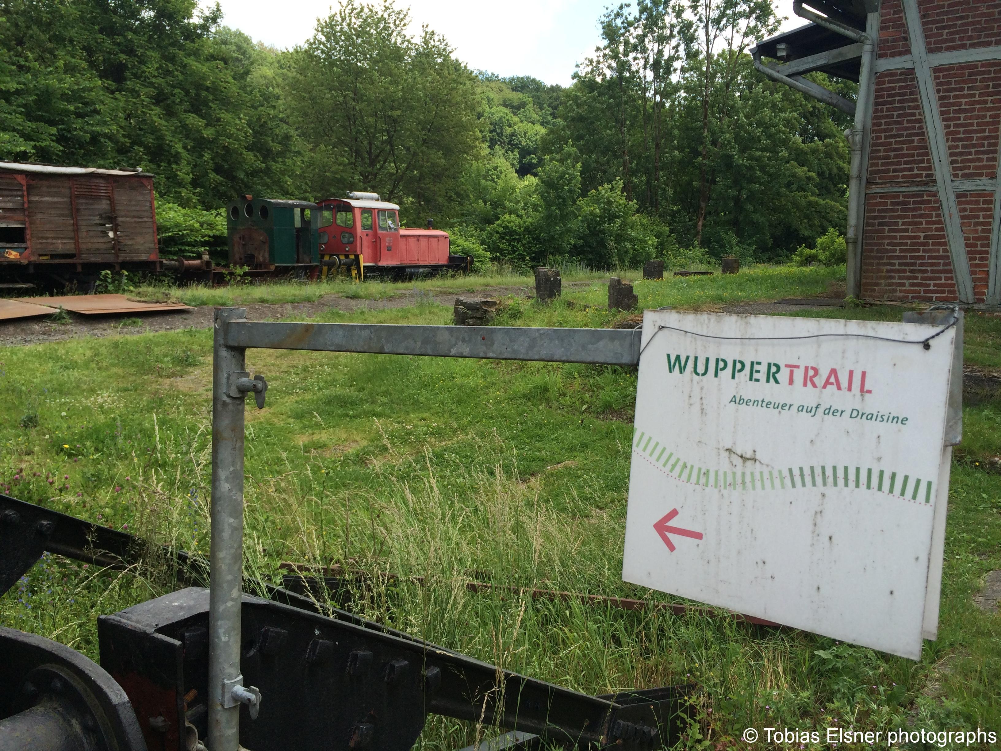 Wanderung Wald Wasser Wolle Weg Radevormwald 2014 Nr.67