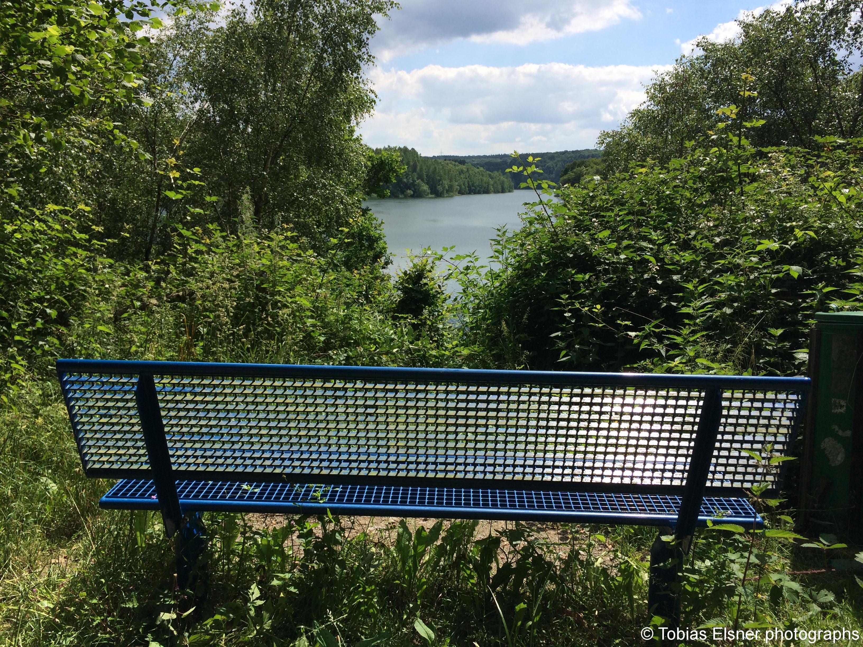 Wanderung Wald Wasser Wolle Weg Radevormwald 2014 Nr.81