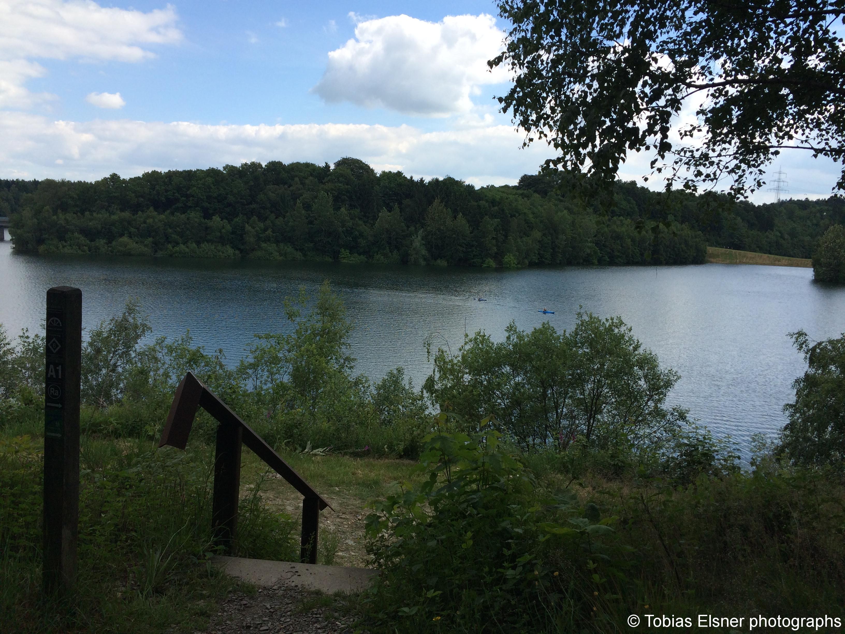 Wanderung Wald Wasser Wolle Weg Radevormwald 2014 Nr.83