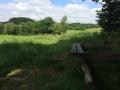 Wanderung Wald Wasser Wolle Weg Radevormwald 2014 Nr.19