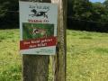Wanderung Wald Wasser Wolle Weg Radevormwald 2014 Nr.23
