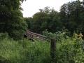 Wanderung Wald Wasser Wolle Weg Radevormwald 2014 Nr.62