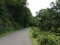 Wanderung Wald Wasser Wolle Weg Radevormwald 2014 Nr.71