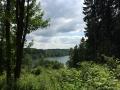 Wanderung Wald Wasser Wolle Weg Radevormwald 2014 Nr.80