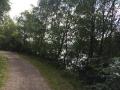 Wanderung Wald Wasser Wolle Weg Radevormwald 2014 Nr.82