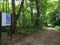 Wanderung Wald Wasser Wolle Weg Radevormwald 2014 Nr.86