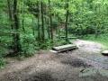 Wanderung Wald Wasser Wolle Weg Radevormwald 2014 Nr.91